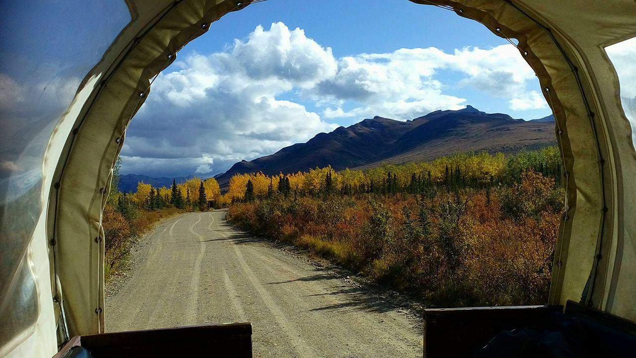 Beautiful view from the covered wagon, Cool Summer Job in Alaska - Horse Wagon Guide