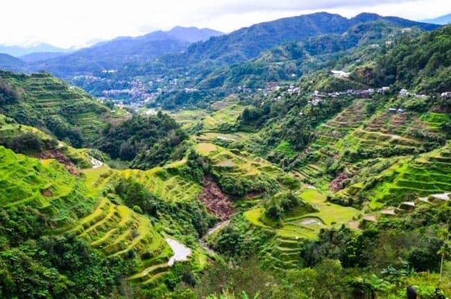Rýžové terasy Banaue