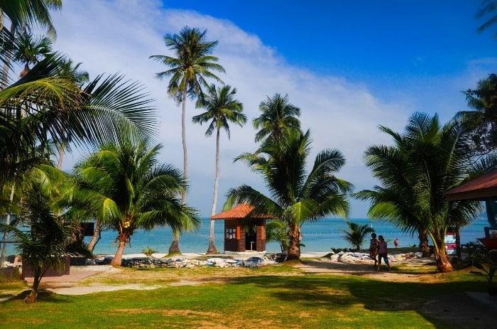 Tábořiště se nachází vedle pláže v příjemném polostínu vysokých stromů