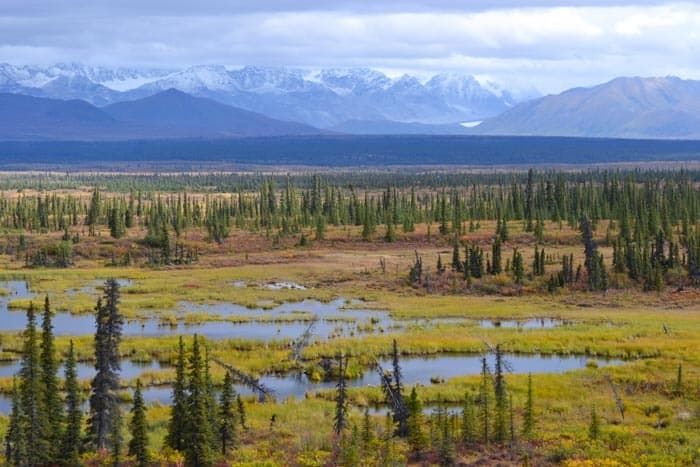 Traveling Denali Highway in Alaska, late August
