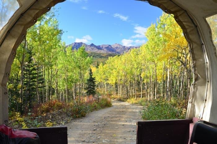 Nádherné podzimní barvy nedaleko NP Denali