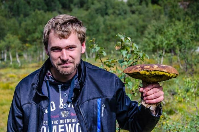 Norway - paradise for mushroom pickers during traveling in Norway