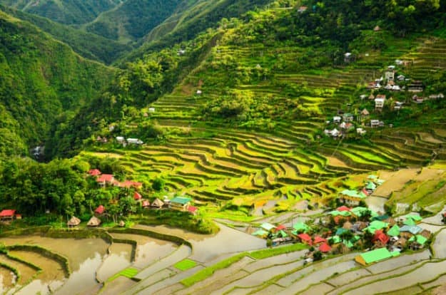 Rýžové terasy v Banaue, Filipíny
