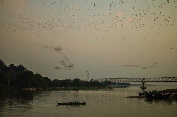 Tisíce a tisíce netopýrů, neskutečná podívaná...