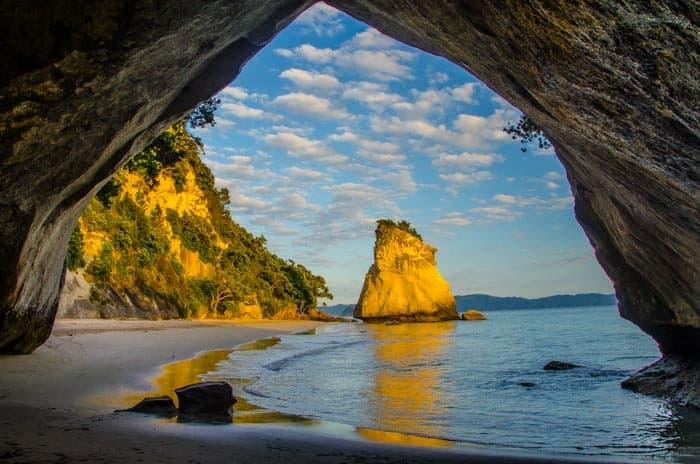 Working Holiday Víza Nový Zéland Autofill Návod