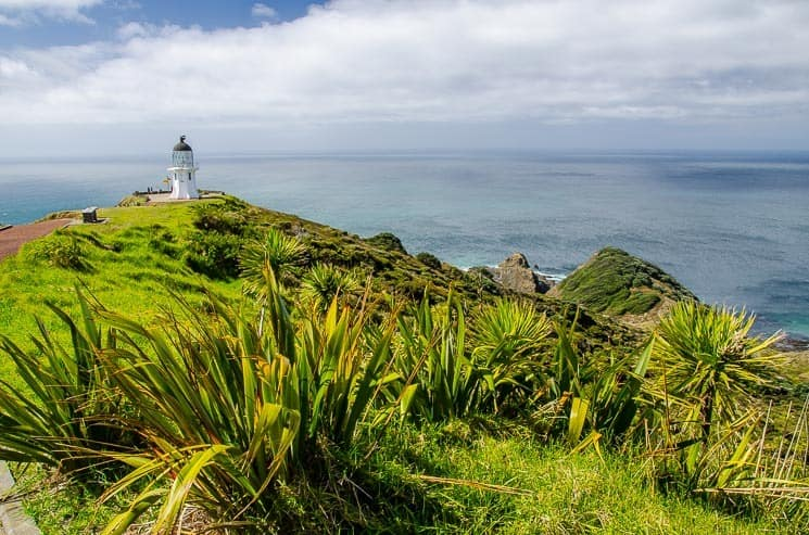 Cape Reinga, New Zealand, North Island