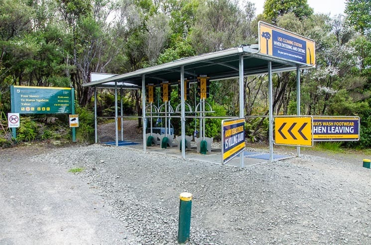 Cleaning station, entrance to Kauri Walks, Waipoua Forest.