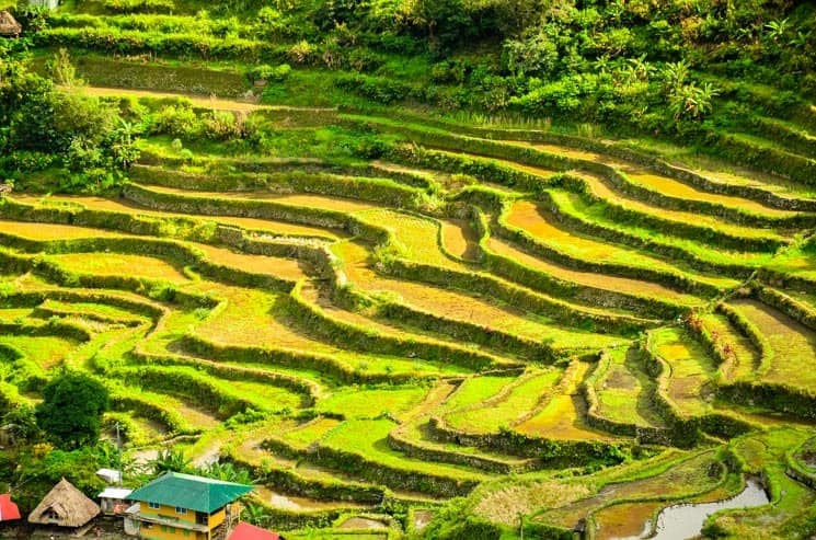 Rice terraces in Batad. Tourist Spots in Luzon, The Philippines