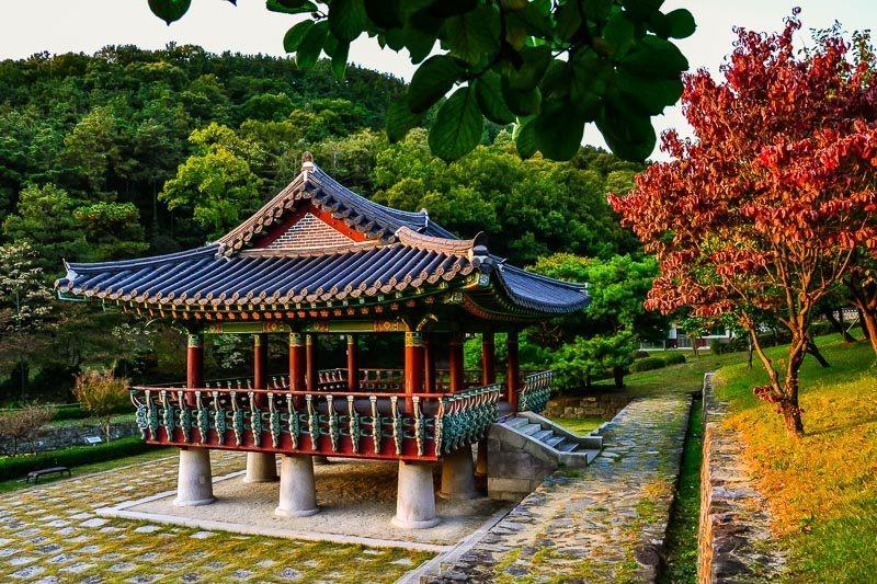 Daejeon - úžasné podzimní barvy