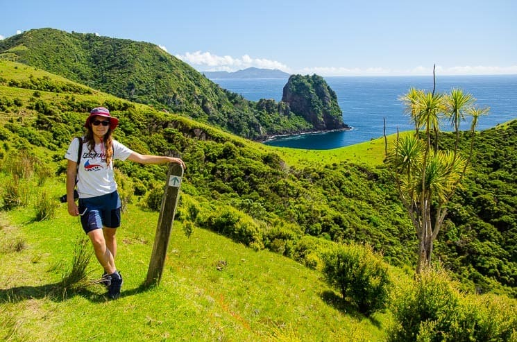 Coromandel Coastal Walkway and its beautiful views with Sugar Loaf in the background.
