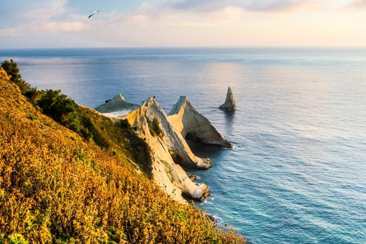 Cape Kidnappers. Best New Zealand Travel Apps