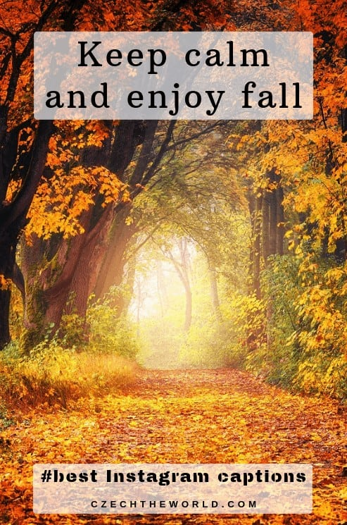 Keep calm and enjoy fall, Fall Instagram Captions