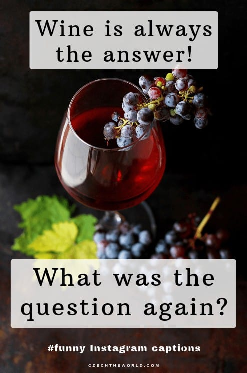 Wine is always the answer. What was the question again? Best Instagram Quotes