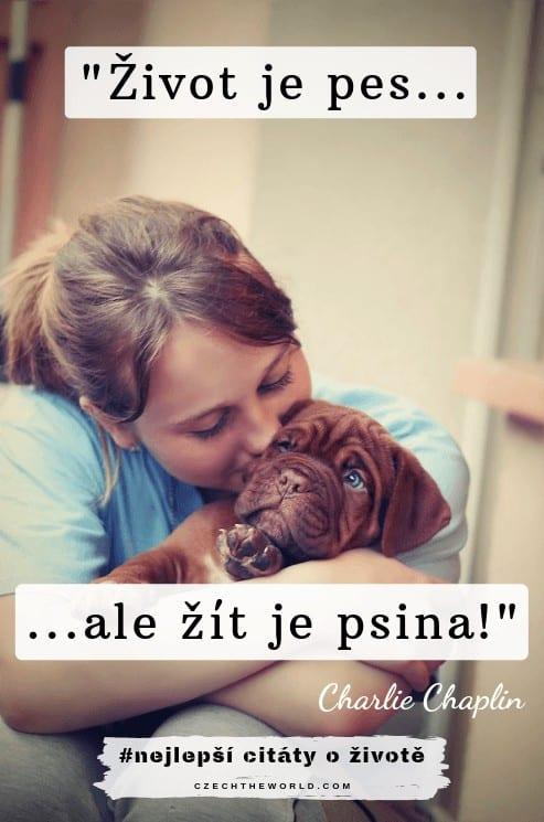 Život je pes, ale žít je psina. – Charlie Chaplin - citáty o životě