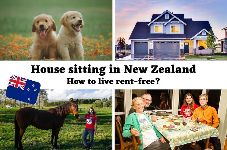 House Sitting in New Zealand: How to become a House Sitter and live rent-free?