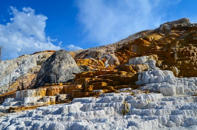 Travertine terraces in Mammoth Hot Springs.