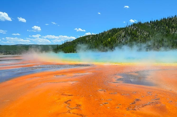 Grand Prismatic Spring - 3rd largest hot spring in the world. Photo from the boardwalk.