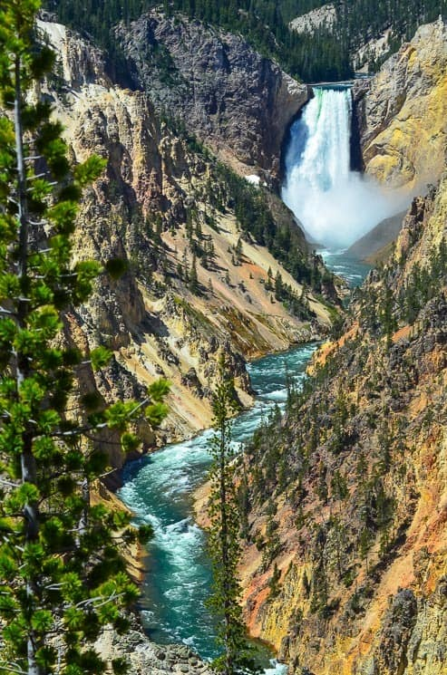 Grand Canyon of Yellowstone from the Artist Point - definitely one of the top places to see in Yellowstone National Park.