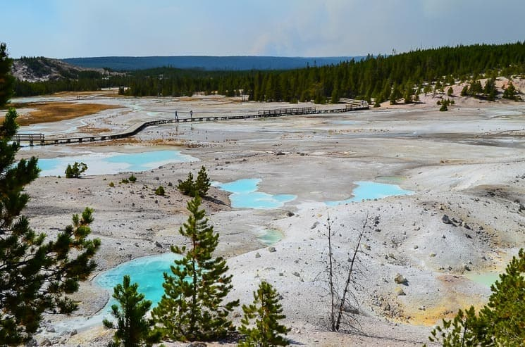 Norris Geyser Basin - the most dynamic Geyser Basin of Yellowstone National Park.