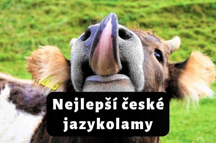 Nejlepší české jazykolamy