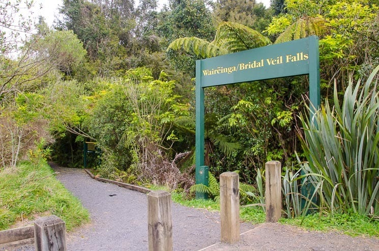 Bridal Veil Falls (Waikato): All you need to Know + Photo Gallery 4