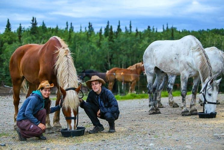 Na Aljašce je možné pracovat s koňmi.