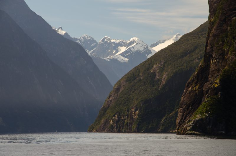 Milford Sound Cruise Experience, New Zealand 4