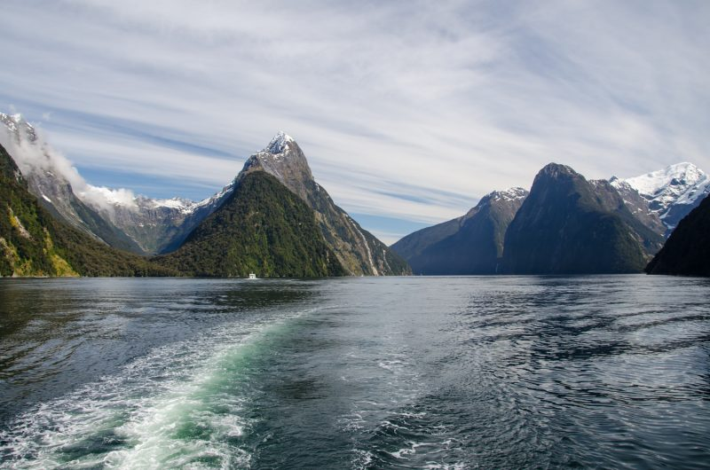 Milford Sound Cruise Experience, New Zealand 8