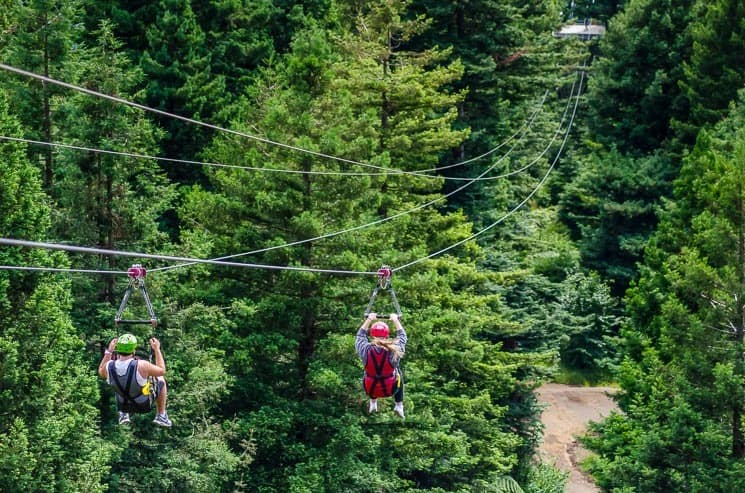Things To Do In Rotorua - Zoom Zipline