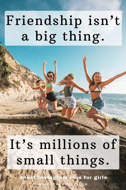 Friendship isn't a big thing. It's millions of small things. Instagram bio