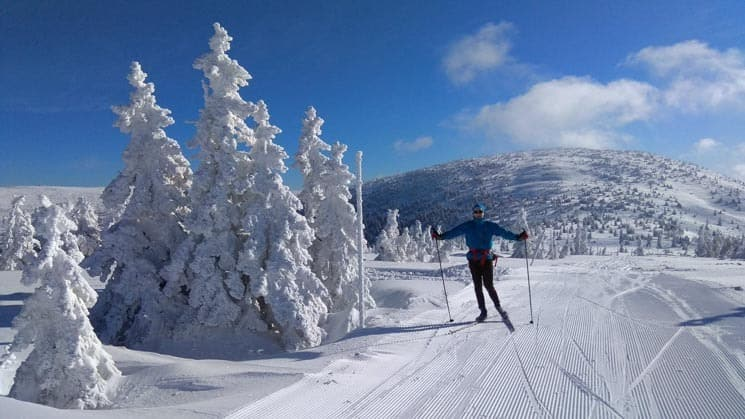 Krkonoše - Cross country skiing in is definitely among best things to do in winter