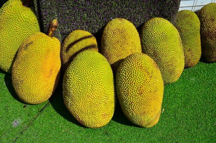 Durian - typické malajské ovoce