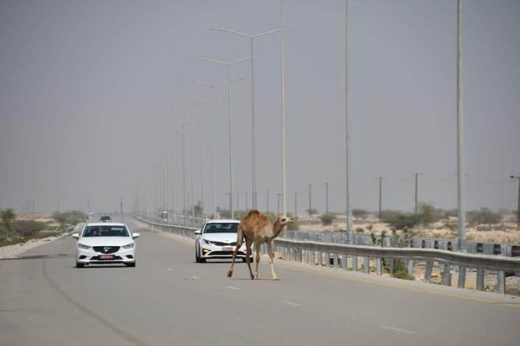 Omán doprava