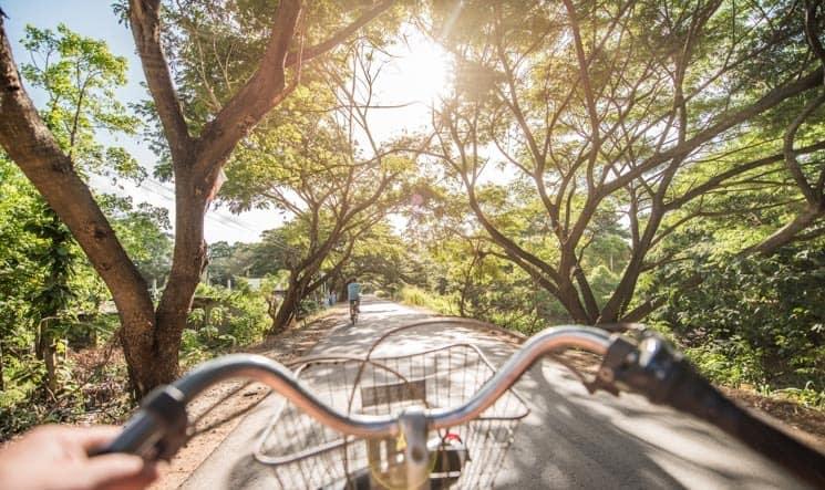 Na kole pod stromy Muri (smrt), Thalawa , Srí Lanka