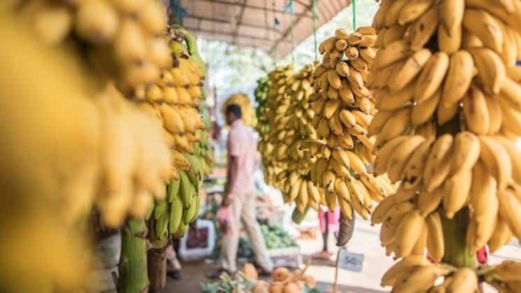 Ovocný trh Anuradhapura, Srí Lanka