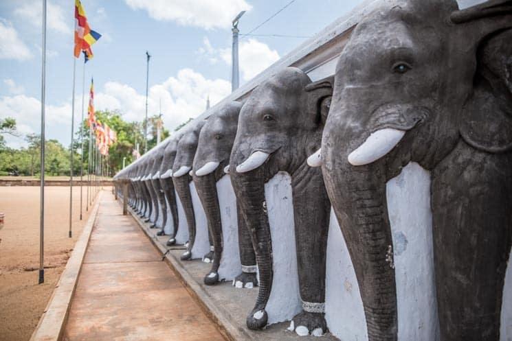 Srí Lanka: praktické informace na cestování + zajímavá místa