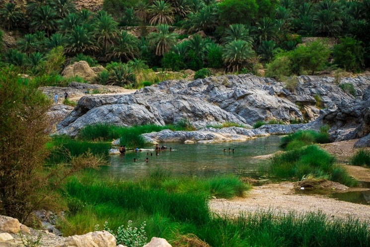 Things to do in Muscat - Wadi Arbeieen