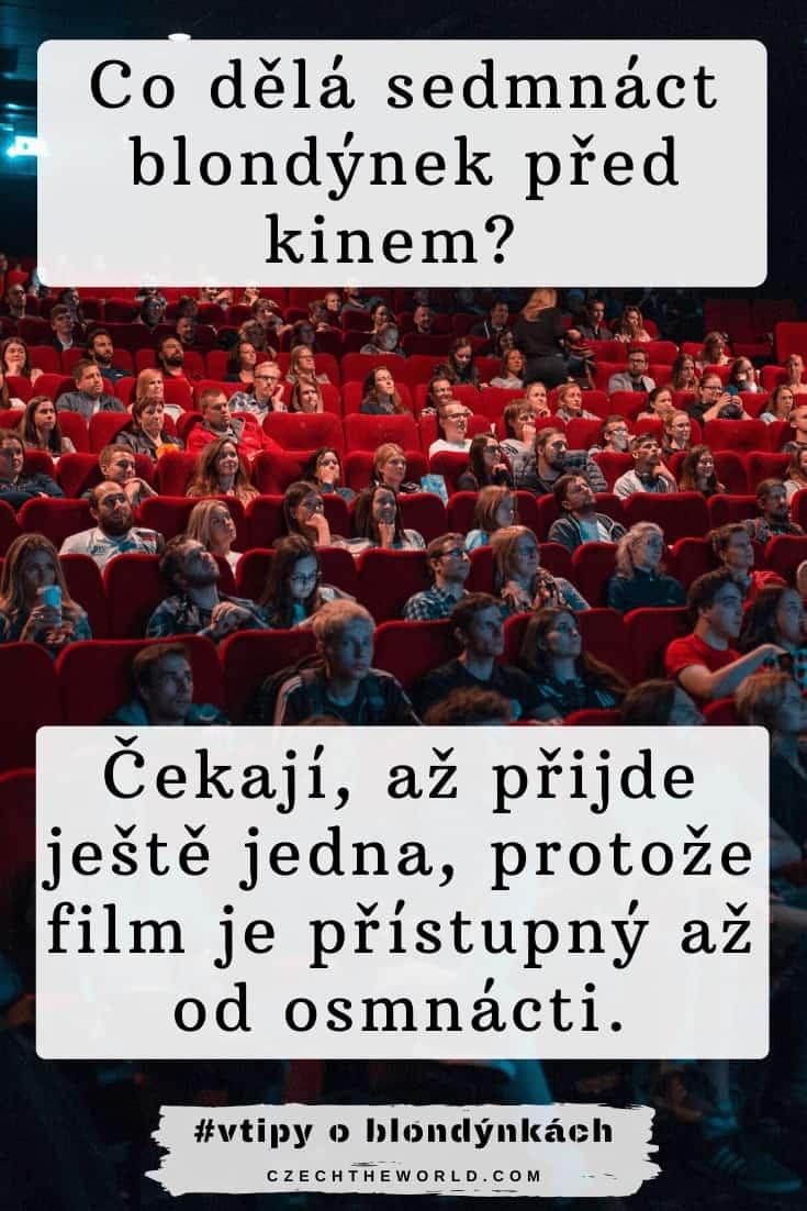 Vtipy o blondýnkách - Co dělá sedmnáct blondýnek před kinem_ Čekají, až přijde ještě jedna, protože film je přístupný až od osmnácti.
