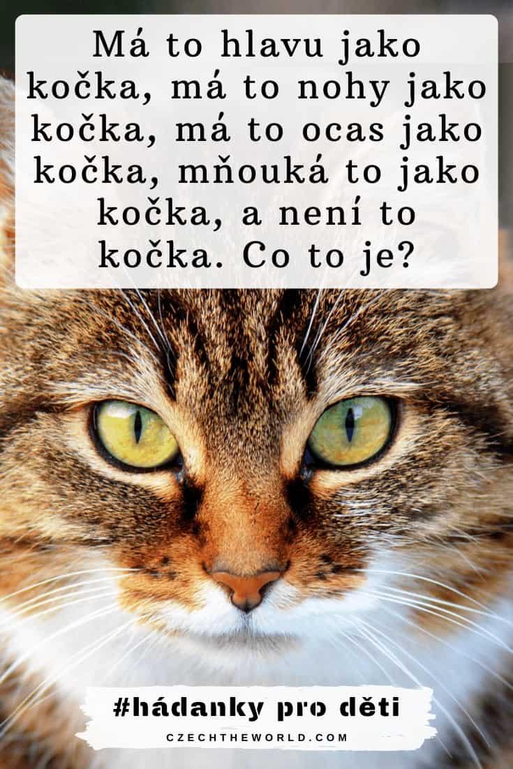Má to hlavu jako kočka, má to nohy jako kočka, má to ocas jako kočka, mňouká to jako kočka, a není to kočka. Co to je_ Hádanky pro děti