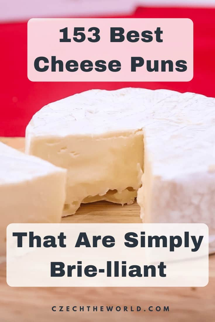 153 Best Cheese Puns (1)