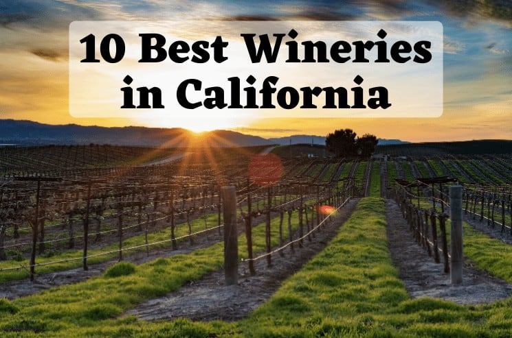 10 Best California Wineries