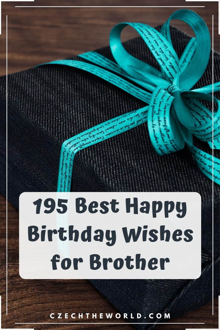 195 Best Happy Birthday Wishes for Brother (1)