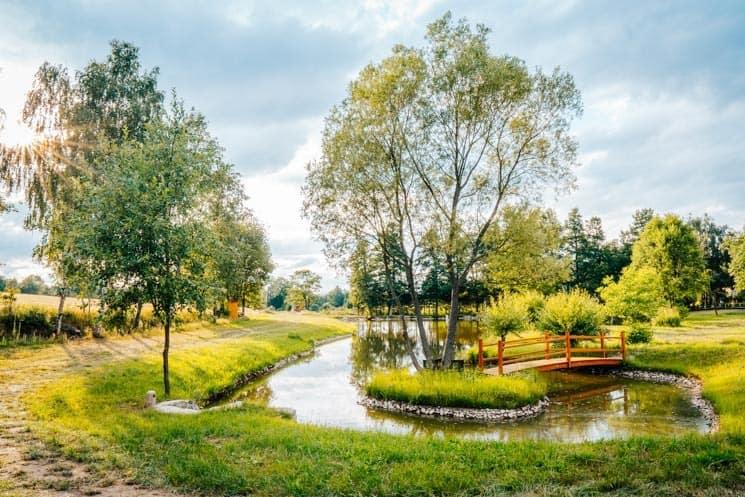 Treehouse Česká Kanada - výhled