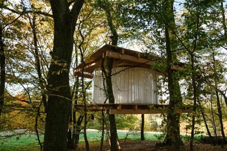 Prosklený dům na stromě