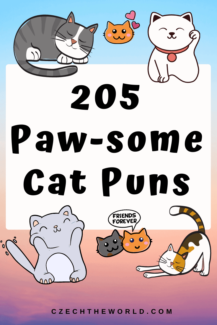 205 Best Cat Puns That Are Simply Paw-some! 3
