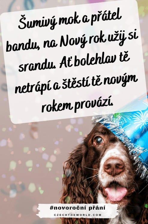 Novoroční přání se psem