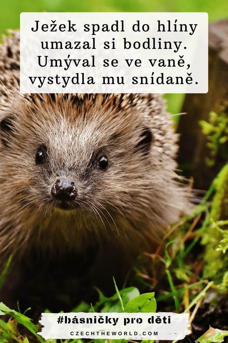 Básničky pro děti - ježek