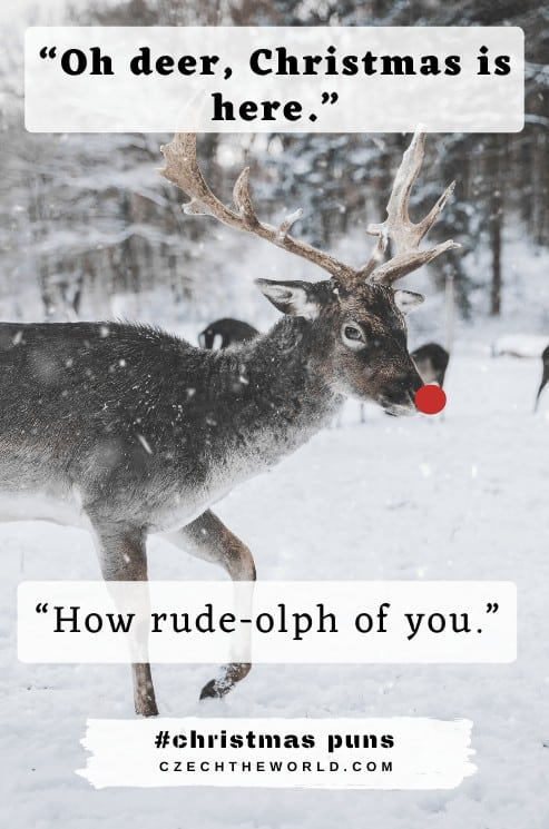 Reindeer Christmas Puns