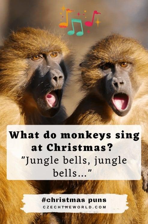Aminal Christmas Puns