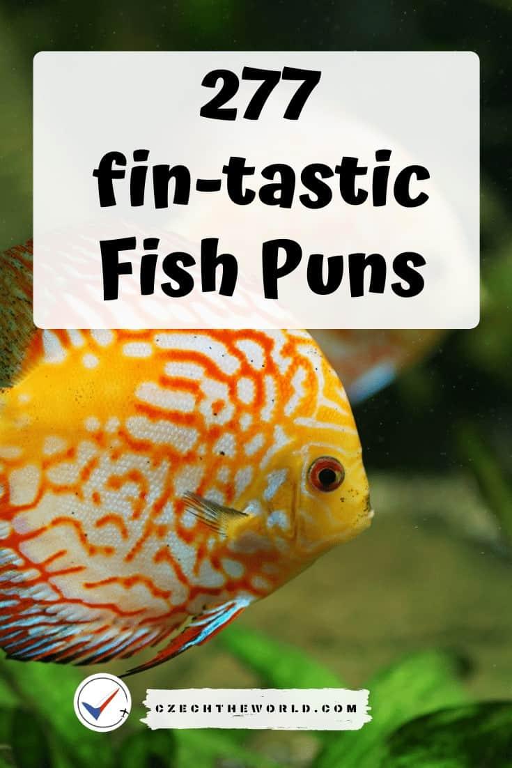 277 fin-tastic Fish Puns